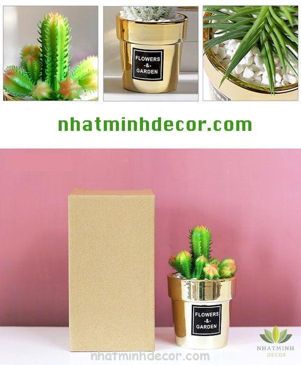 chau-cay-flowers&garden-13