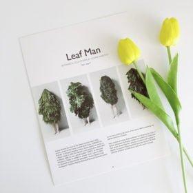 Mẫu 4 - Leaf man