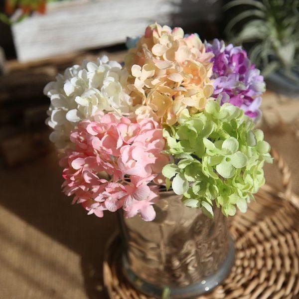 Hoa cẩm tú cầu 11