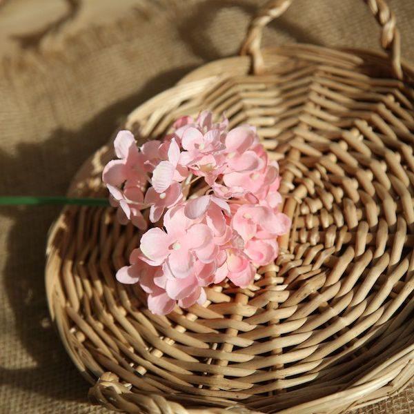 Hoa cẩm tú cầu 18