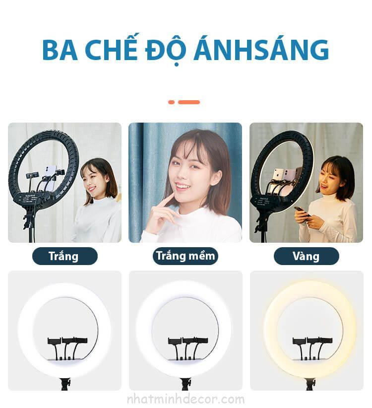 den-led-ring-size-54cm-ho-tro-livestream-kep-3-dien-thoai-makeup-chup-hinh-studio-ban-hang-online-10